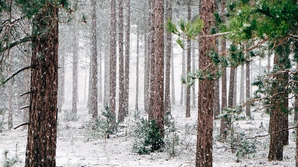 Novim sustavom za zasnježenje Platak će produžiti zimsku sezonu