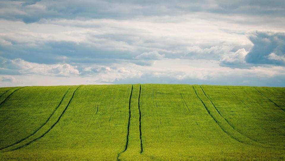 Radna skupina za poljoprivredu o Programu potpora male vrijednosti u novom programskom razdoblju
